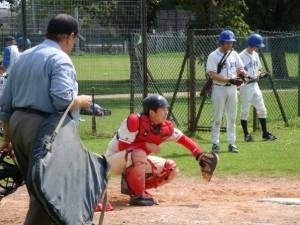 Leading hitter